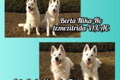 mvp-brno-astaberta-1.2.20